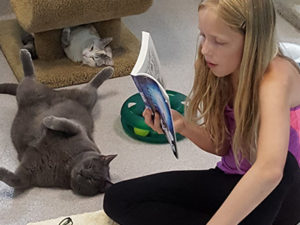 Reading to Cats event